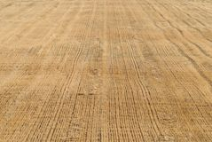 Background of stubble field of Tuscany Royalty Free Stock Images