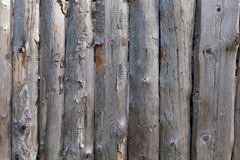 Background in style a rustic from old unpainted vertical boards with knots. And the exfoliated bark Stock Photography
