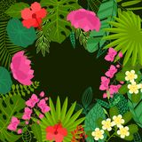 Background of stylized tropical plants, leaves and Royalty Free Stock Photography