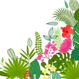 Background of stylized tropical plants, leaves and Royalty Free Stock Photo