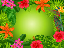 Background with stylized tropical plants, leaves and flowers Stock Photos