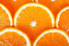 Background of succulent orange Royalty Free Stock Image