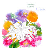 Background  with summer flowers and watercolors-04 Royalty Free Stock Photography