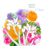 Background  with summer flowers and watercolors-03 Royalty Free Stock Images
