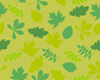 Background summer leaves Stock Photo