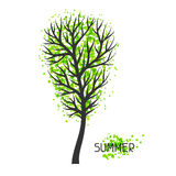Background with summer tree. Illustration of silhouette and abstract spots Royalty Free Stock Photos