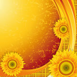 Background with sunflowers royalty free illustration
