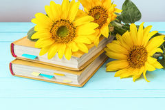 Background with sunflowers and yellow book on blue wooden boards Stock Image