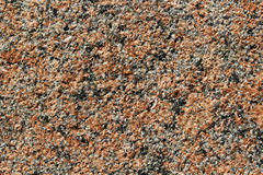 Background - a surface of a granite crumb Stock Image