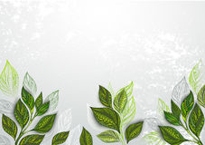 Background with tea plants Royalty Free Stock Photo
