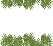 Background template in fir trees. royalty free illustration