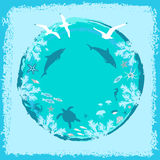 Background for text with the image of water, sea animals and birds. Stock Images
