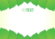 Background text leaves v2 Stock Photo