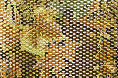 Background of textile texture. Stock Image