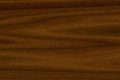 Background texture of American walnut wood. Close-up vector illustration