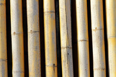 Background texture of bamboo. Decorative highlighting the relief Royalty Free Stock Images