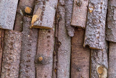 Background texture bark with coniferous species material for construction roof fence eco building natural. Foundation Royalty Free Stock Image