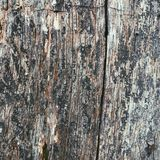 Background and texture Royalty Free Stock Photos