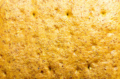 Background texture of bread Stock Images
