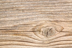 Background texture of cedar wood Stock Photo