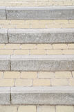 Background, texture of a city paving stone on the whole frame. Vertical frame Stock Photography