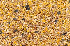 Background texture of crushed seed and grain mix. For livestock and bird feed as a dietary supplement for the animals royalty free stock photography