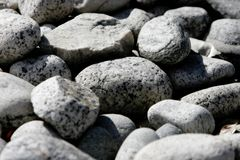 Background/Texture - Dry River Rocks. On a Hot Day (shallow focus). Can represent drought, landscape, etc royalty free stock image