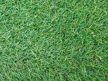 Background texture with fake grass. Royalty Free Stock Photo