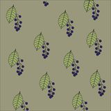 Background texture with a floral pattern. Light green leaves and blue fruit cherry on a gray background, autumn Stock Photos