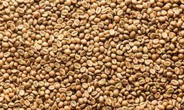 Background texture or fresh raw dried coffee beans Royalty Free Stock Photo