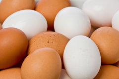 Whole Eggs Stock Images