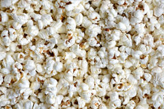 Background texture of freshly made popcorn Stock Images