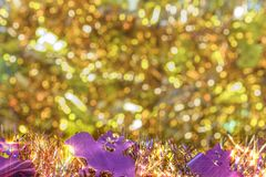 Background texture full of small golden bokeh with garlands decorated of purple smiling bats faces in foreground to celebrate royalty free stock photos
