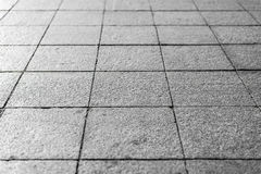 Background. Texture of gray square paving tiles on the entire frame. Horizontal frame Royalty Free Stock Photography