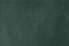 Background with texture of green leather. Close up Stock Photography