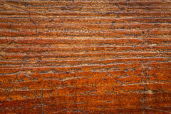 Background texture of grunge wood. Background texture of  grained, scratched, grunge wood board Royalty Free Stock Photos
