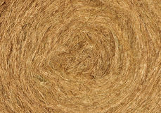 Background texture of hay Royalty Free Stock Image