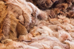 Background or texture image of fur. In perspective Stock Photography
