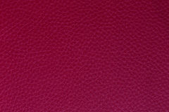 Background and texture imitation leather magenta Royalty Free Stock Image