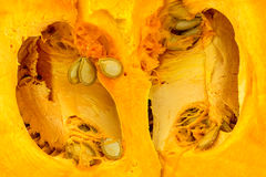 Background texture of inside of orange seeded pumpkin Royalty Free Stock Image