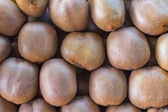 Background texture kiwi fruit Stock Image