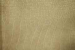 Background texture of leather. The Background texture of leather Royalty Free Stock Photo