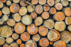Background texture logs stacked in piles. Logs stacked in piles. background texture of wood Royalty Free Stock Photos