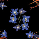 Background texture made of  Aquilegia, lily and place for text Stock Images