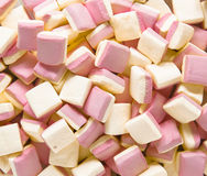 Background texture made of many marshmallows Stock Image