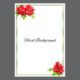 Background texture made of red rosehips  flowers  and place for Stock Photos