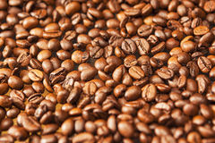 Background Texture Made of Roasted Coffee Beans Royalty Free Stock Photo
