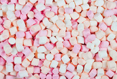 Background or texture of mini marshmallows Royalty Free Stock Images