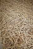 Background texture natural hay stack Stock Photo