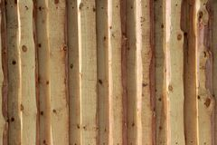 Background texture. New light wooden wall made of boards. Background texture. New light wooden wall, illuminated by the sun royalty free stock images